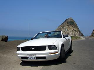 Ford Mustang avo